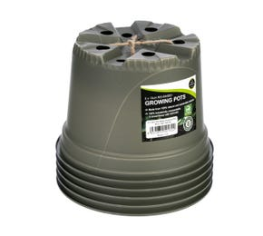 12cm Biodegradable Plant Pots (5 pk)